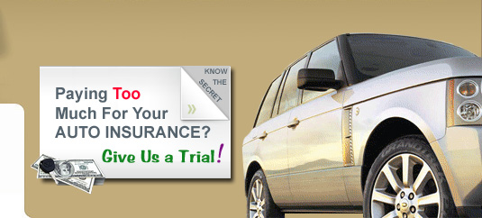 Chibueze Insurance Agency